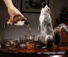 Las 5 cervezas más caras del mundo | Rincón Abstracto