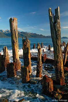 Resurrection Bay - Seward, Alaska | This photo doesn't do Seward justice...but it's cool