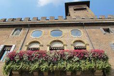 Padova - Italy