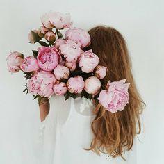 flowers, peonies, and pink image My Flower, Fresh Flowers, Pink Flowers, Beautiful Flowers, Parfum Rose, Pink Peonies, Planting Flowers, Floral Arrangements, Blog