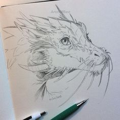 40 Free & Easy Animal Sketch Drawing Ideas & Inspiration Drawing Tips dragon drawing Easy Sketches, Easy Drawings, Cool Dragon Drawings, Realistic Dragon Drawing, Cool Pencil Drawings, Amazing Drawings, Sketch Art, Drawing Sketches, Drawing Ideas