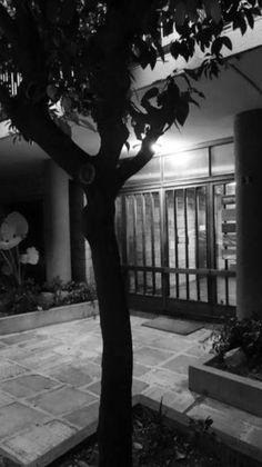 Entrance Entrance, Group, Architecture, Plants, Arquitetura, Entryway, Door Entry, Plant, Architecture Illustrations