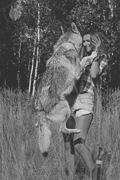 """Czechoslovakian Wolfdog      """"Bohun"""" Quebeck II od Úhoště"""