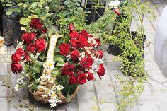 Flowers festival in Tbilisi, Georgia