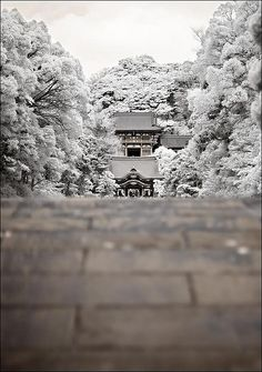 In Infrared Kamakura, Japan: How could you not see that and wonder about the adventures that could be had?Kamakura, Japan: How could you not see that and wonder about the adventures that could be had? Kamakura, Famous Castles, Japanese Culture, Japan Travel, Photos, Pictures, Land Scape, Places To See, Beautiful Places