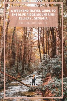 Hey Wanderer: Ellijay, GA Travel Guide: A Weekend in the Blue Ri. Travel Diys, Places To Travel, Travel Guide, Places To Visit, Hiking In Georgia, Blue Ridge Mountains, Nashville Tennessee, East Tennessee, United States Travel