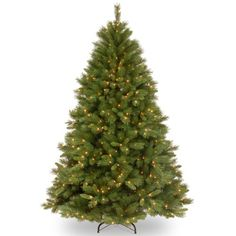 National Tree 75 Foot Winchester Pine Tree with 500 Clear Lights Hinged WCH730075 *** You can get more details by clicking on the image.-It is an affiliate link to Amazon. #SeasonalDecor