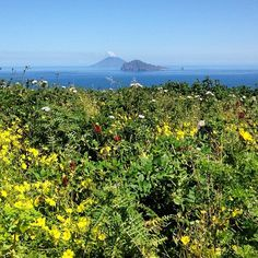 Panarea, Aeolian Islands, Sicily ph. Davide Guglielmino