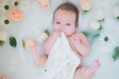 Peach and Cream Baby Milk Bath, milk bath pictures, styled pictures