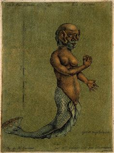 The Image of the Mermaid | What do Mermaids Look like? The Image of the Mermaid by Sorita d'Este Black Actresses, Black Actors, Disney Films, Disney S, Mythical Sea Creatures, Quick Image, Mermaid Images, Wellcome Collection, Sea Serpent