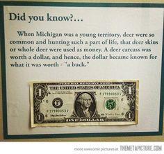 The reason dollars are called bucks…