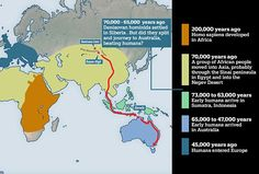 Professor Richard Roberts from the University of Wollongong believes high traces of DNA from ancient hominids found in Aboriginal people suggest Denisovans were the first on the continent. Human Evolution, Aboriginal People, Strange History, The Beautiful Country, Ancient Civilizations, World History, People Around The World, Genetics, Geography