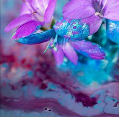 Nature Photography, Flowers, Painting, Painting Art, Nature Pictures, Paintings, Wildlife Photography, Royal Icing Flowers, Painted Canvas