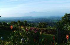 Darlene's back yard. Nice view from her kitchen window!  ~~Grecia, Costa Rica