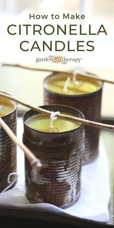 If your favorite thing in the summer is warm nights outside, then likely one of your least favorite things is getting eaten alive by mosquitoes. Making citronella candles in cans is a great recycling project that is inexpensive and effective.  #gardentherapy #diycandles #citronella #mosquitoes #outdoordiy Citronella Candles, Diy Candles, Candle Jars, Beeswax Candles, Easy Crafts, Crafts For Kids, Garden Candles, Diy Projects For Beginners, Diy Chicken Coop