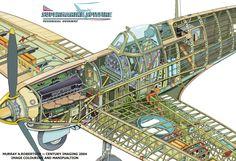 Spitfire Cutaway