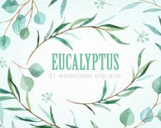 Eucalyptus Leaf Watercolor clipart Graphics The set of high quality hand painted watercolor Eucalyptus leaf images in bright and fresh color pal by everysunsun Watercolor Plants, Wreath Watercolor, Watercolor Leaves, Watercolor And Ink, Pencil Illustration, Digital Illustration, Graphic Illustration, Pot Image, Leaf Clipart