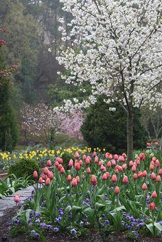 Sarah P. Duke Gardens, North Carolina | Barb's Images