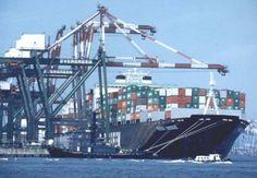 Puerto De Veracruz Mexico   El movimiento de contenedores por el puerto de Veracruz, reportó un ...