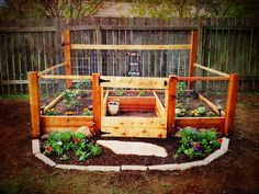This is BEAUTIFUL!!!!!!!!!!!!!!!!!! RAISED BED ORGANIC VEGETABLE GARDEN