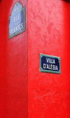 Paris  I used to live on Rue des Plantes!