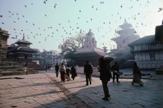 People walking in Durbar Square.~ Nepal...look at those flocks of birds!