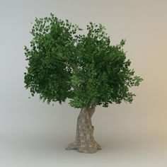3D Model of tree 07 low poly