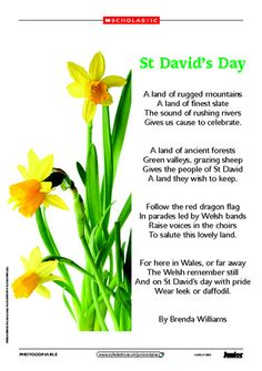 St David day poemSt David's Day, Wales - 1st March