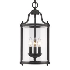 Golden Lighting Payton Black Transitional Clear Glass Lantern Pendant Light at Lowe's. The clean, streamlined design of Golden Lighting's Payton collection makes it an instant classic. The simple metal frames house clear glass. Lantern Pendant Lighting, Foyer Lighting, Candle Chandelier, Candle Sconces, Lighting Ideas, Pendant Lights, Cage, Black Pendant Light, Mini Pendant