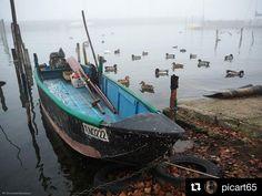 #Repost @picart65  Boat in the fog #boat #boatsinthelake #trasimenolake #trasimeno #germanireali #folaghe #fog #foginthelake #fishingboats #fishinglife #fishingtrip #fishingboat #sanfeliciano #sanfelicianolike #acqua #laketrasimeno #nature  #naturelovers #trasimeno_lake