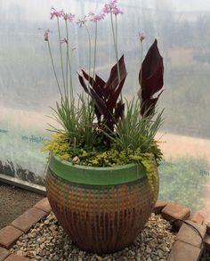 Simple plant arrangement