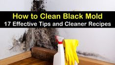 Kill Black Mold, Clean Black Mold, Remove Black Mold, Cleaning Mold, Household Cleaning Tips, Cleaning Recipes, Cleaning Hacks, Shower Mold Cleaner, How To Kill Mold
