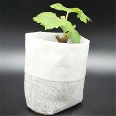 Model Number: T021Material: OtherSet Type: NoType: Nursery PotsFinishing: Not Coated