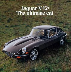 #Advertisement #Jaguar #Etype