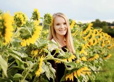 Senior Pictures in the sunflowers #claytonnc #sunflower #heidiwoodphotography