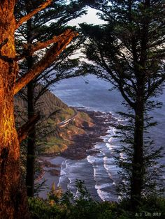 ~~View From Cape Perpetua ~ Yachats, Oregon by A.F. Litt~~