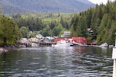 Telegraph Cove, BC. This place is so awesome. campsite, boat launch, seafood restaurant with the best fish & chips EVER, and and the scenery is beautiful! really good place to visit