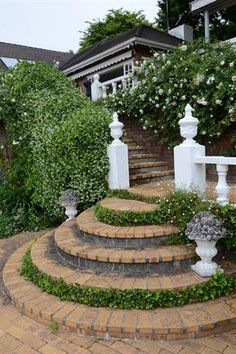 Garden and Home Potted Plants, Stepping Stones, Home And Garden, Gardens, Gallery, Floral, Outdoor Decor, Inspiration, Home Decor