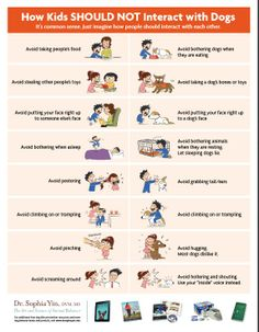 how kids should NOT interact with dogs!