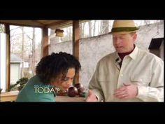 Moss Rocks! My Carolina Today - YouTube