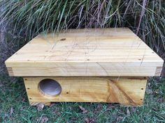 Hedgehog Box Feeder