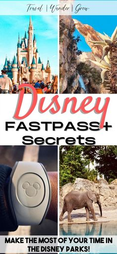 Planning a trip to Disney World or Disneyland soon? This post provides the best FastPass secrets so that you can learn how to skip the lines in the park. Learn how to skip the lines in Hollywood Studios, Magic Kingdom, Animal Kingdom, and Epcot. Get the best Disney World trip planning tips for ALL the top rides in the Disney theme parks. Disney World tips and tricks. Disneyland tips. Best US Travel desintations. Disney World Trip, Disney Parks, Travel With Kids, Family Travel, Disney Fast Pass, Top Ride, Tower Of Terror, Disneyland Tips, Us Travel Destinations