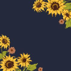 Download Sunflower Pattern for free