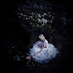 Jennifer Ilene Photography