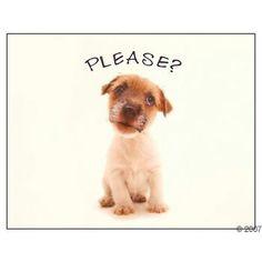 Puppy dog face!!!
