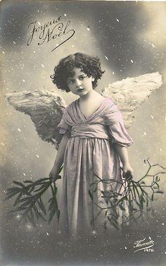 Vintage Rose Album : anges...