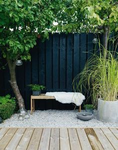 This is Awesome Black Garden, we already selected Top Black Plants and Flowers and it's will enhance your garden. Have you ever thought about adding some drama to your garden by adding plants… Backyard Fences, Garden Fencing, Backyard Landscaping, Landscaping Ideas, Black Garden Fence, Black Fence, Garden Bed, Garden Paths, Backyard Ideas
