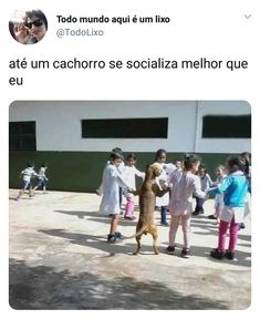 The post appeared first on Memes BRasileiros. Funny V, Funny Memes, Hilarious, Kpop Memes, Spanish Memes, New Memes, Disney Memes, I Laughed, Laughter