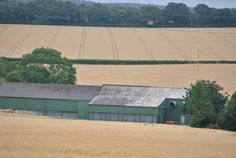 2013 - just outside Clanfield, Hampshire - pete holbrook