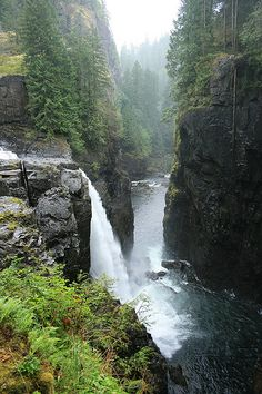 natur paisajes Elk Falls Provincial Park Vancouver Island, BC, Canada by Francois Boucher Oh The Places You'll Go, Places To Travel, Places To Visit, Vancouver Island, British Columbia, Canada Winter, Canada Canada, Canada Trip, Ottawa Canada